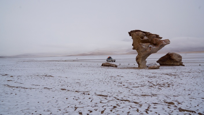 Bolivien Arbol de Piedra