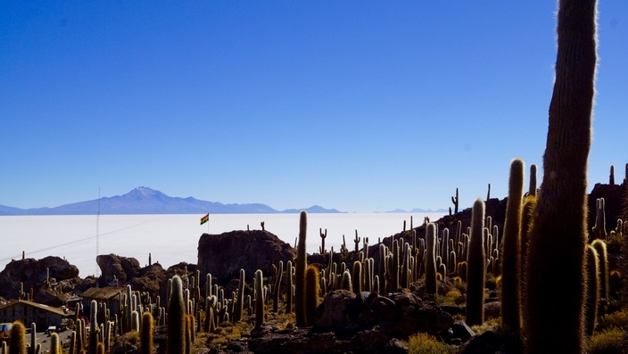 Bolivien Isla Incahuasi