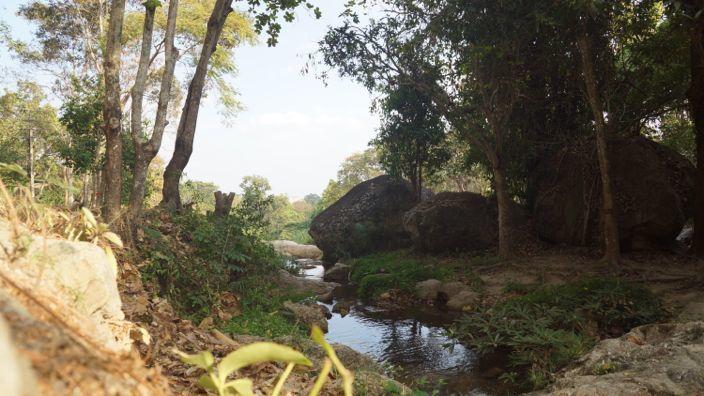 Chiang Mai Nature