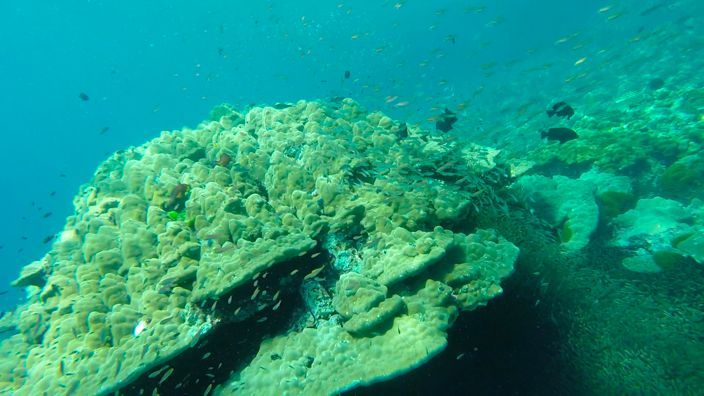Scubadiving Koh Lanta rocks