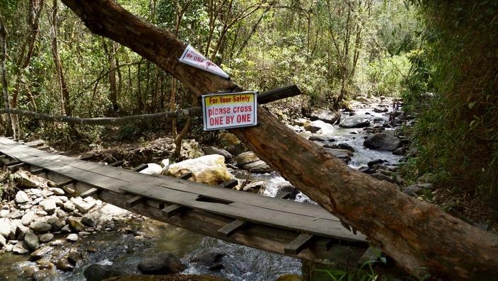 Fluss Valle de Cocora Salento