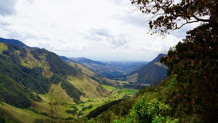 Ausblick La Montaña Valle de Cocora Salento