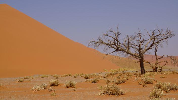 Namibia Sossusvlei Big Daddy