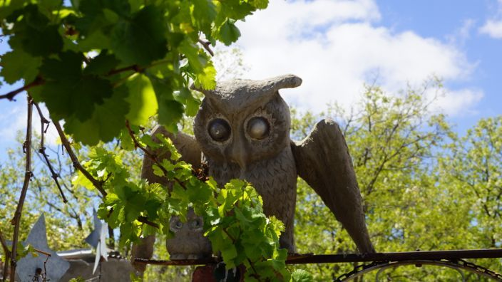 Owl House Nieu-Bethesda