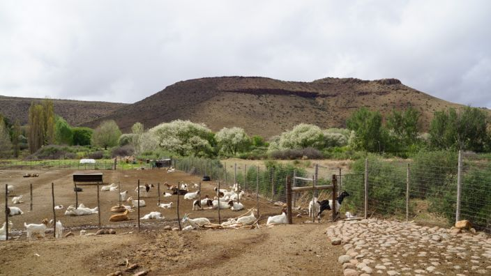 Nieu-Bethesda Farm