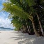 Panama, Coiba Island