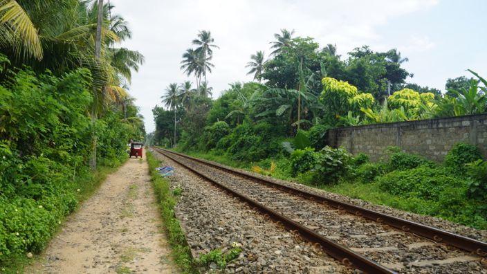 Sri Lanka Tracks